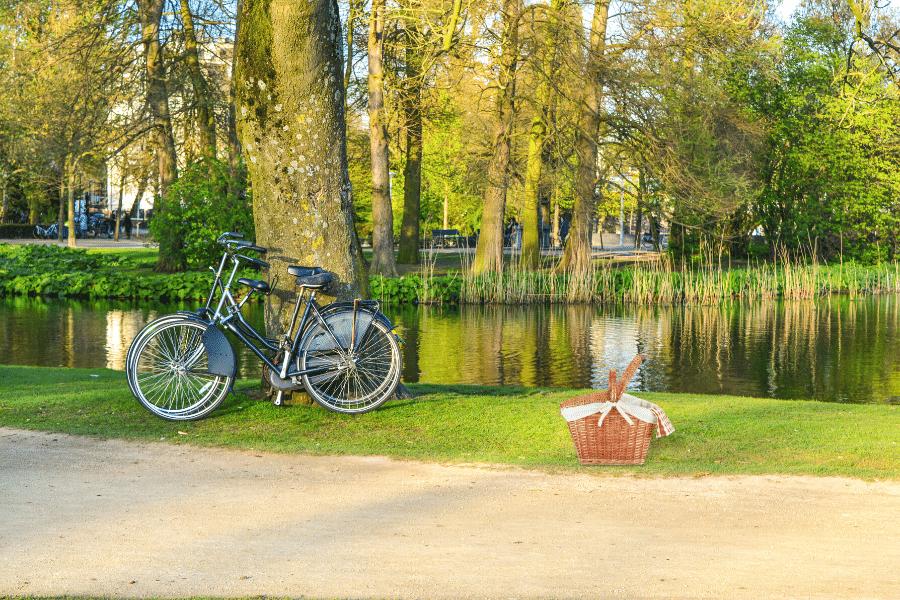 amsterdam Vondelpark picnic